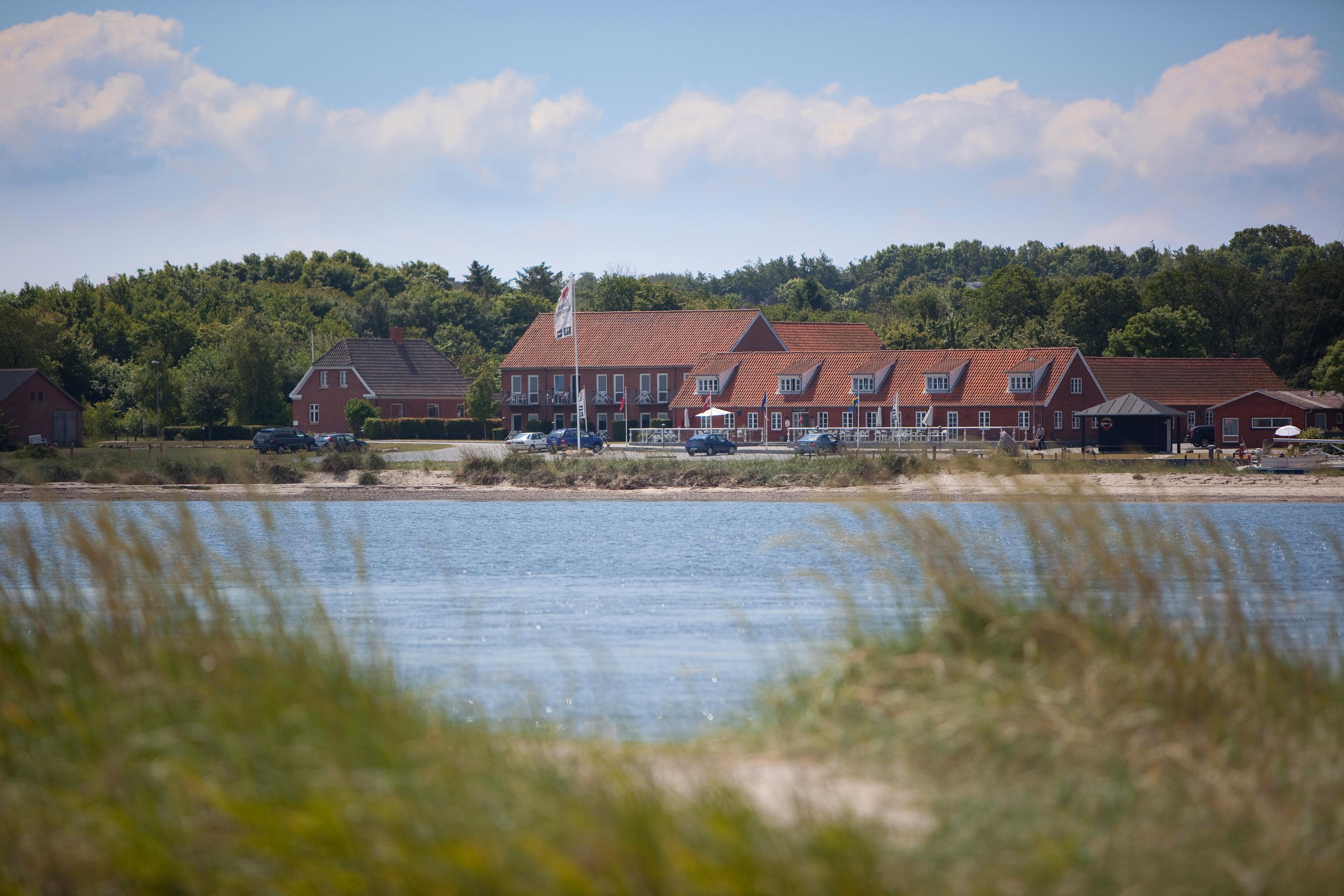 høns til salg nordsjælland escort girls copenhagen